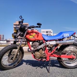 ホンダ FR223D 限定2000台 QR50カラー 検索用:TW...