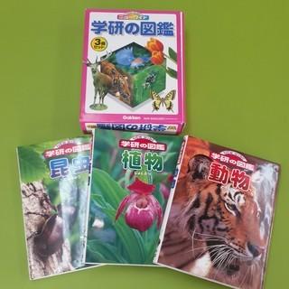 S181213 学研の図鑑3冊セット(植物・動物・昆虫) ★格安★