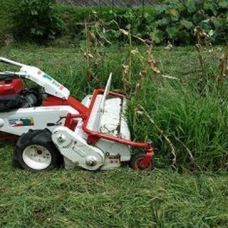 草刈り 坪500円~