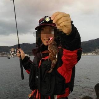平日海釣り仲間を募集しています