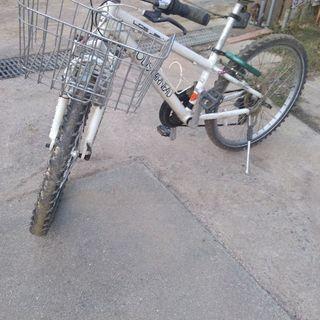 子ども用自転車 ルイガノ マウンテンバイク 24インチ