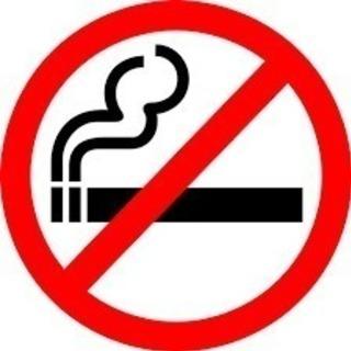 ☆2019年1月末までの短期☆千葉市 受動喫煙対策条例の周…