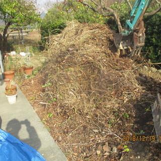 福岡、空地の草刈り、剪定枝の引取り、格安便利屋