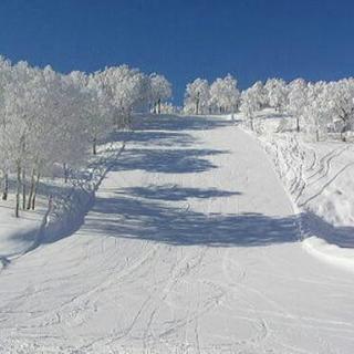 私とスキーに行ったって