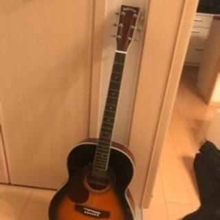 レフトハンド  アコースティックギター 色々セット