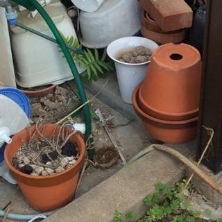 不要になった、プラスチック植木鉢、その他ガラクタ無料で差し上げますの画像