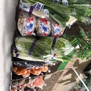 新鮮野菜100円市場♪♪♪♪
