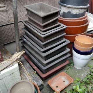 【引き取り無料】植木鉢&プランター たくさんあります