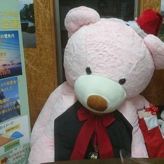営業アシスタント事務【企画営業希望者大歓迎】
