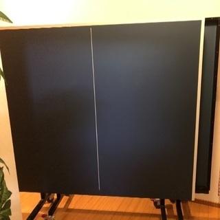 卓球台 IGNIO 国際規格サイズ