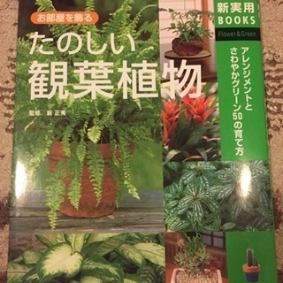 たのしい観葉植物
