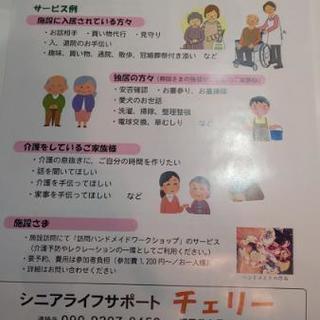 介護保険適用外サービス(自費サービス)シニアライフサポート  チェリー🍒 - 海老名市