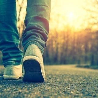 🚶♂️散歩好き🚶♂️友だちつくりたい人募集ーッッ☺️‼️‼️