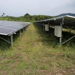 かめさわ 太陽光発電所草刈作業、メガソーラーの除草作業 - 霧島市