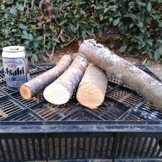 広葉樹ミックス丸薪!未乾燥。長さ29cm。18年9月〜11月伐採...