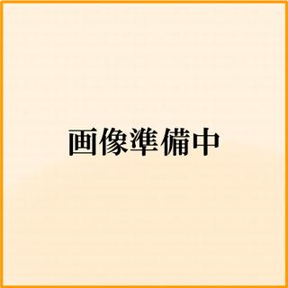 【繁忙期目前😁初期費用16万円👑】江戸川区の新築物件!ウォークインクローゼット♪ − 東京都