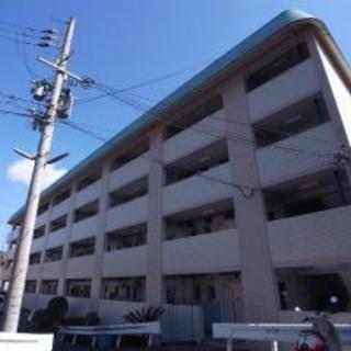 初期費用7万ポッキリ フルリノベーションの1LDK 駐車場5400円