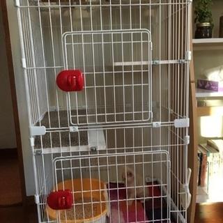 猫ケージ アイリスオーヤマ 2段ケージ 8ヶ月使用