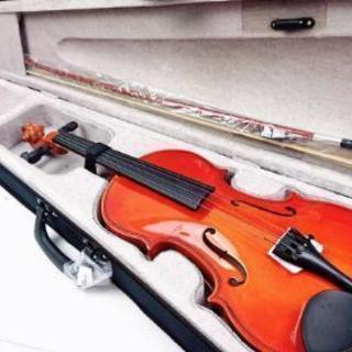 ヴァイオリン 木製 初心者用 音楽 楽器 新品未使用
