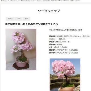 東急ハンズ渋谷店で「春の開花を楽しむ!桜のモダン盆栽をつくろう」...
