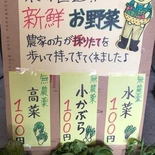 農家直送!無農薬!100円