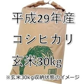 お取引中)お米 平成29年産 福島県産 コシヒカリ 玄米 30kg