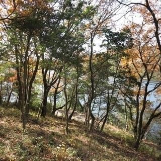東条湖屈指のロケーションでログかポスト&ビームを建てて終の棲家にい...