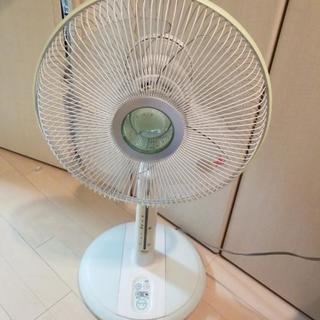 冬こそ夏のご準備を☀️イオン扇風機