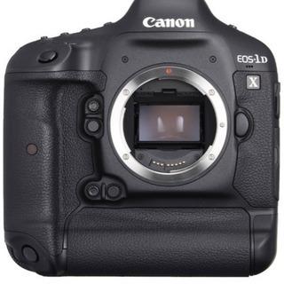 初心者向け★写真の撮り方・カメラ選びのお手伝いをします。