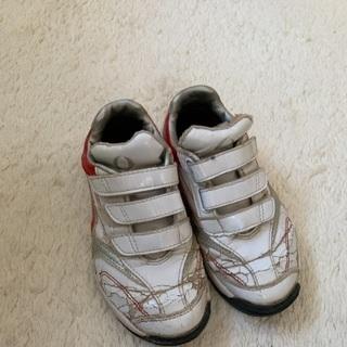 野球トレーニング靴21センチ