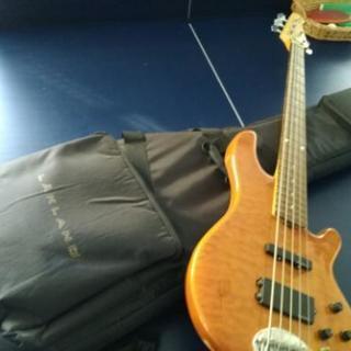 【値下げ応談可】Lakland skylineシリーズ5弦ベース