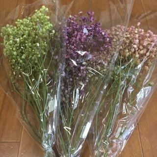 ハーバリウム花材(カスミ草)