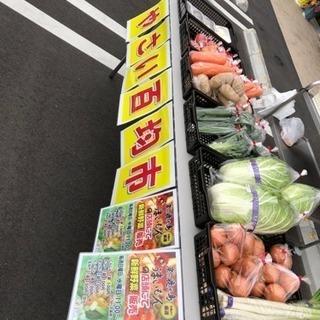 本日、11時より野菜販売開催!!!