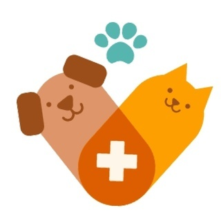 大阪 犬猫 往診専門動物病院 さくらアニマルクリニック