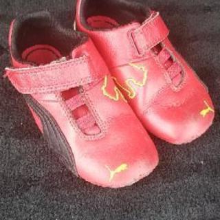フェラーリ PUMAコラボ 運動靴16㎝