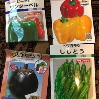 【コメント受付ページ】★送料込★野菜、果樹の種6種類350円