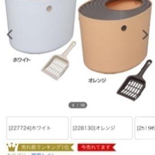 ꙳★*゚無料 ꙳★*゚上から猫トイレ オレンジ