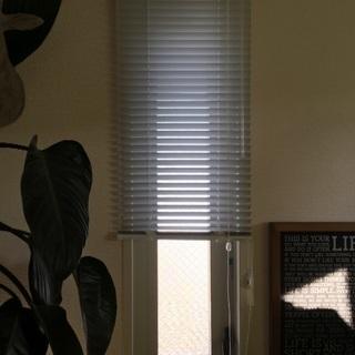 小窓用ブラインド タチカワ 白