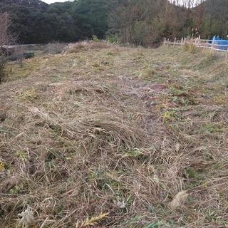 畑、耕作放棄地、山林周りの草刈りをいたします(作業料金:1㎡ 2...