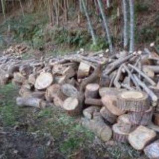 無料にて不要な木材、丸太、庭木等引き取ります。