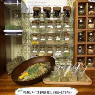 【発酵バイオ野草蒸し】ビオスチーム