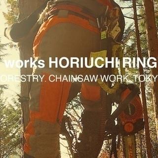 東京都の自然の中で体を使って働こう!山林内での林業業務 未経験大歓迎!