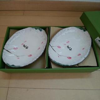 6.5号皿5枚セット(未使用)~手作り風梅もどき