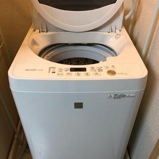 1月31日夕方まで!2016年製 洗濯機