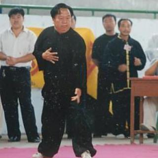Thumb huoyongli001