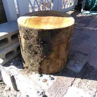 台風で倒れた木(1本から)、庭木、山林、伐採致します!樹木の回収は...