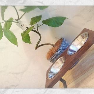 ワンちゃん、猫ちゃん用の手作り食器 アイアンと天然木 新品