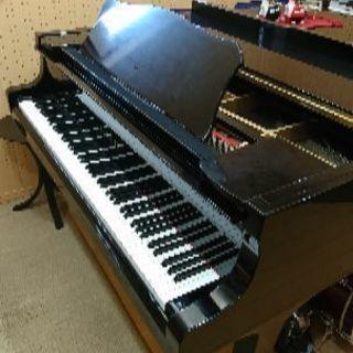 個人レッスンで、私がピアノ担当。主人がギター&ドラム担当です。幼児...