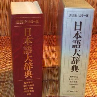 講談社〔カラー版 〕 日本語大辞典