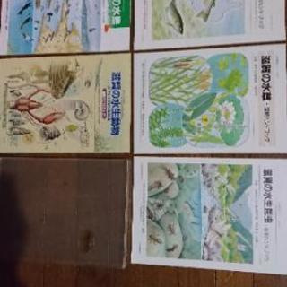 滋賀の自然観察シリーズ